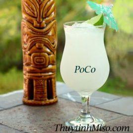 Ly thủy tinh uống sinh tố POCO