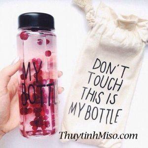 Chai thủy tinh My Bottle + túi vải 3